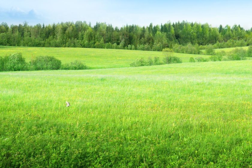 Are There Lawful Benefits to Using an Licensed Land Specialist?