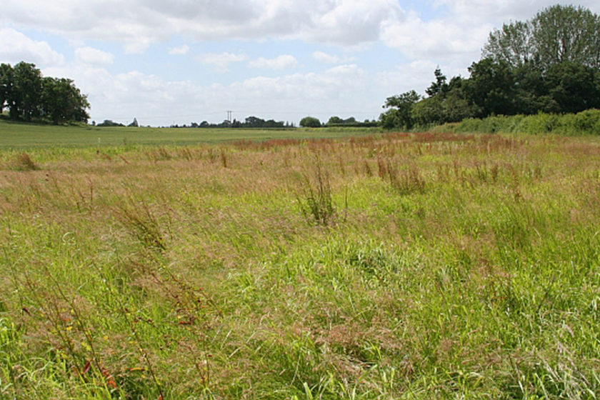 Dholera SIR Residential Plots – Worth Proposition or not?